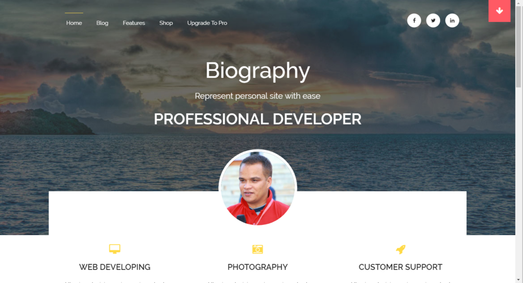 WordPress šablona Biography