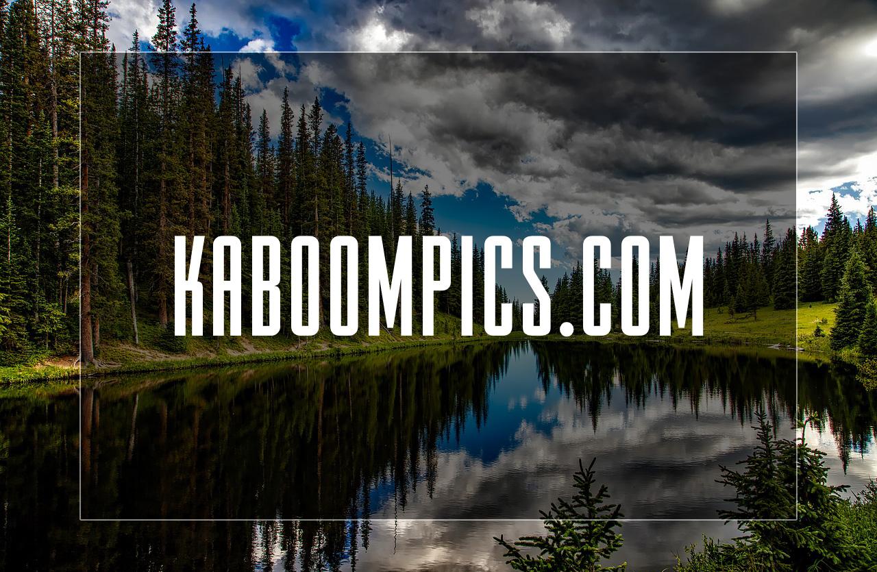 Fotobanka Kaboompics