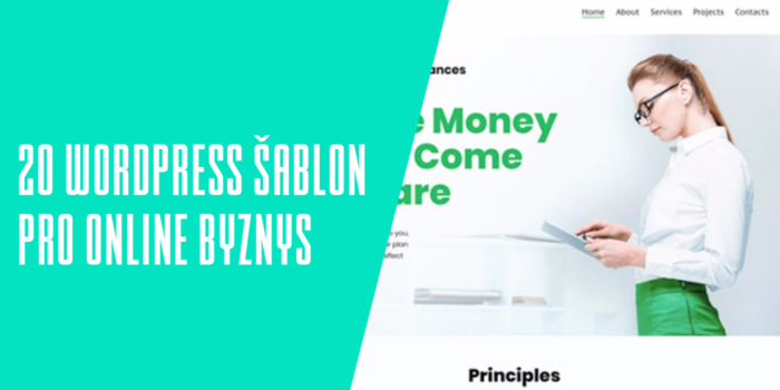 20 WordPress šablon pro online byznys